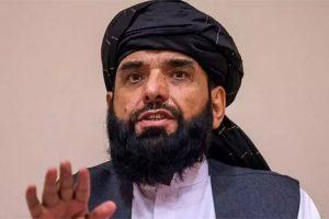 کسی سے انتقام نہیں لیا جائے گا ، ترجمان طالبان
